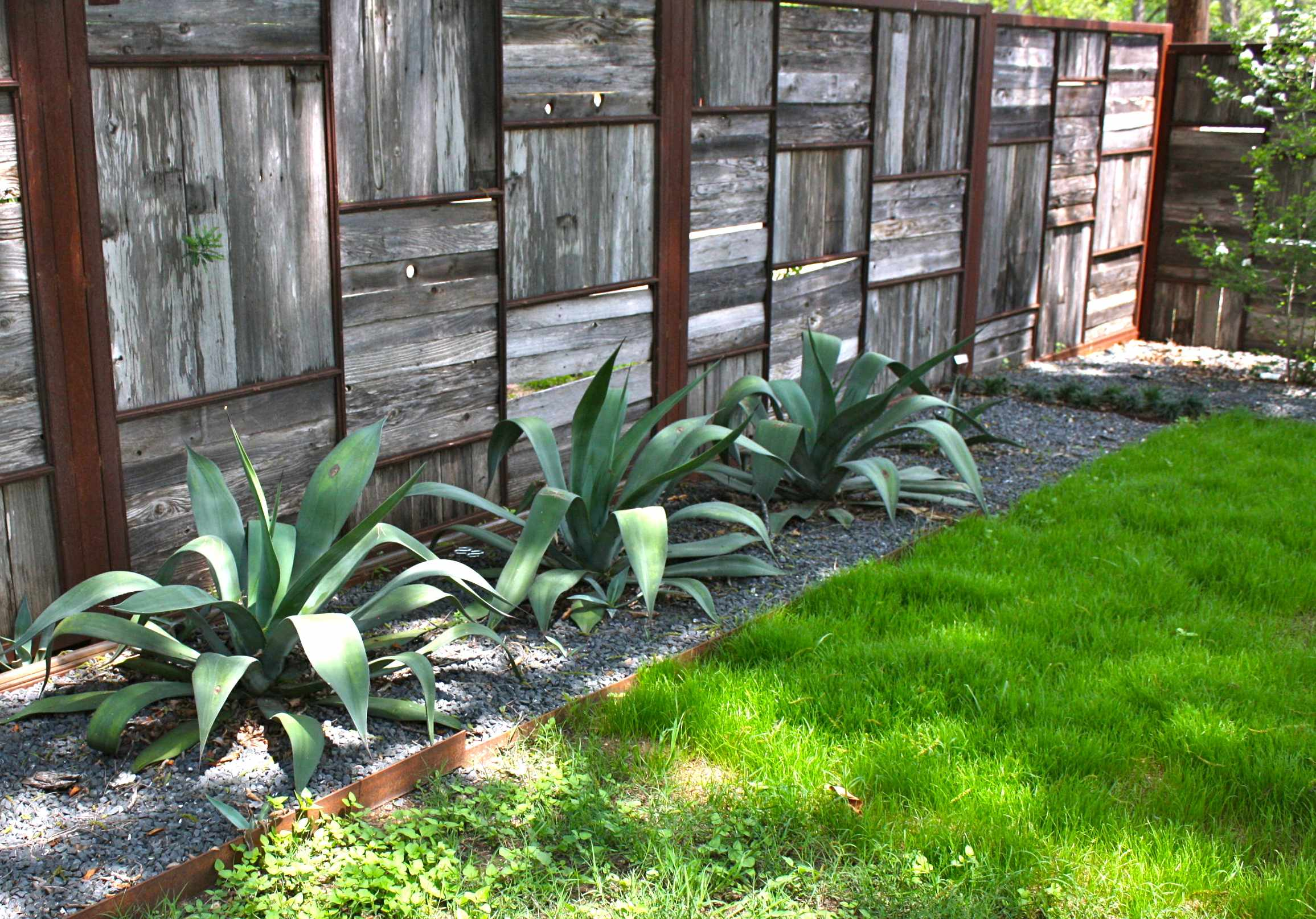 Take a tour inside austin gardens renee 39 s new blog for Garden privacy wall